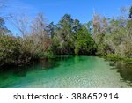 Kayaking Weeki Wachee Springs...