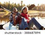 senior african american couple... | Shutterstock . vector #388687894