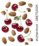 double almond nut isolated on... | Shutterstock . vector #388752034