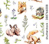 Forest Animals  Rabbits ...