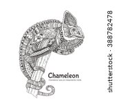 Chameleon With Doodle Pattern....