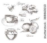 vector sketch drawing healthy... | Shutterstock .eps vector #388860010