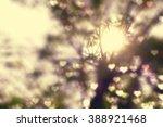 golden heaven light hope... | Shutterstock . vector #388921468