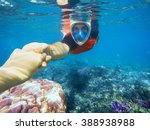 Snorkeling Couple Holding Hand...