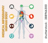 medical infographic human body | Shutterstock .eps vector #388966300