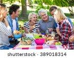 friends having a picnic in a... | Shutterstock . vector #389018314