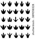 big set of black footprint of...   Shutterstock .eps vector #389058328