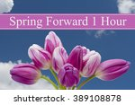 spring time change  some tulips ... | Shutterstock . vector #389108878