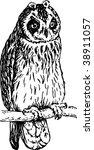 owl | Shutterstock .eps vector #38911057
