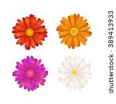 Set Of Colourful Gerbera...