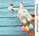 Small photo of Easter bunny and easter eggs