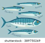 fish collection for... | Shutterstock .eps vector #389750269