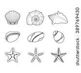 Sea Shells  Stars And Stones...