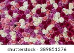 Stock photo flowers wall background with amazing red and white roses 389851276