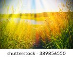 beautiful summer landscape with ...   Shutterstock . vector #389856550
