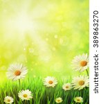 fresh spring grass with daisies ... | Shutterstock . vector #389863270
