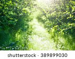 green spring time background | Shutterstock . vector #389899030