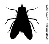 insect silhouette.fly. musca... | Shutterstock .eps vector #389917096