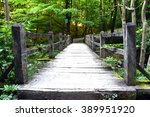 Wooden Bridge On A Hiking Trai...