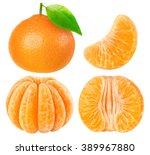 Isolated Tangerines. Collectio...