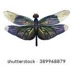 dragonfly. hand drawn vector... | Shutterstock .eps vector #389968879