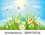 Summer Or Spring Meadow...