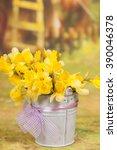 yellow daffodil flowers in...   Shutterstock . vector #390046378