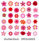 beautiful colorful flowers... | Shutterstock .eps vector #390163003