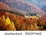 beech forest in the ukrainian... | Shutterstock . vector #390297460