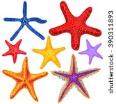 collection of starfish.... | Shutterstock .eps vector #390311893