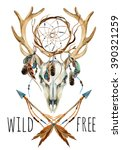Deer skull. Animal skull with dream cather. Deer skull and ethnic dream catcher with feathers isolated on white background. Wild and free design. Watercolor hand painted illustration.