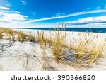 beautiful sea landscape. sandy... | Shutterstock . vector #390366820
