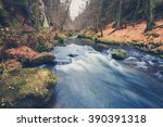River In Forest Landscape...