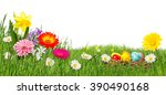 Colorful Easter Meadow Isolate...