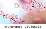 cherry blossom realistic vector ... | Shutterstock .eps vector #390506398