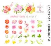 ranunculus  rose  peony ... | Shutterstock .eps vector #390517174