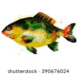 watercolor carp fish | Shutterstock . vector #390676024