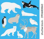 arctic animals collection.set... | Shutterstock .eps vector #390680860