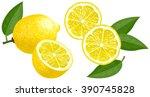 lemon | Shutterstock .eps vector #390745828