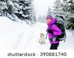 woman hiking trekking in winter ... | Shutterstock . vector #390881740