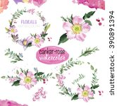 watercolor canker rose  wreaths ... | Shutterstock . vector #390891394