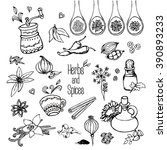 herbs and spices  freehand...   Shutterstock .eps vector #390893233