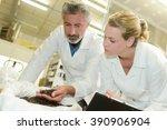 fresh coffee beans | Shutterstock . vector #390906904