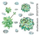 cactus stone rose with rock... | Shutterstock . vector #391072978
