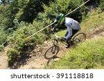 innsbruck  austria   august 29  ... | Shutterstock . vector #391118818
