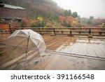 raining day transparent... | Shutterstock . vector #391166548