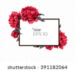 peony frame. vector illustration | Shutterstock .eps vector #391182064