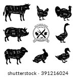 set a schematic view of animals ... | Shutterstock .eps vector #391216024