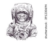 Monkey in astronaut suit. Hand drawn vector illustration | Shutterstock vector #391230694
