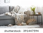 Stock photo color point cat lying on a sofa in living room 391447594